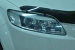Защита фар Audi Q7 2007- (EGR, 201010)