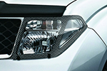 Защита фар Nissan Pathfinder/Navara 2005- (EGR, 227150CF)