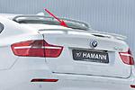 Задний спойлер «Hamman Style» BMW X6 08- (S-Line, BMW.X6.ABS.06)