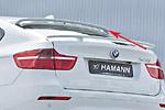 Спойлер на стекло «Hamman Style» BMW X6 08- (S-Line, BMW.X6.ABS.10)