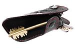 Чехол для ключей Ford (универсальный) (BGT-LKH904-F)