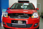 Дефлектор капота для Ford Fiesta 2002-2007 (SIM, SFOFIE0612)